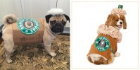 19 Best Dog Costumes for Halloween 2017 - Cute Halloween ...