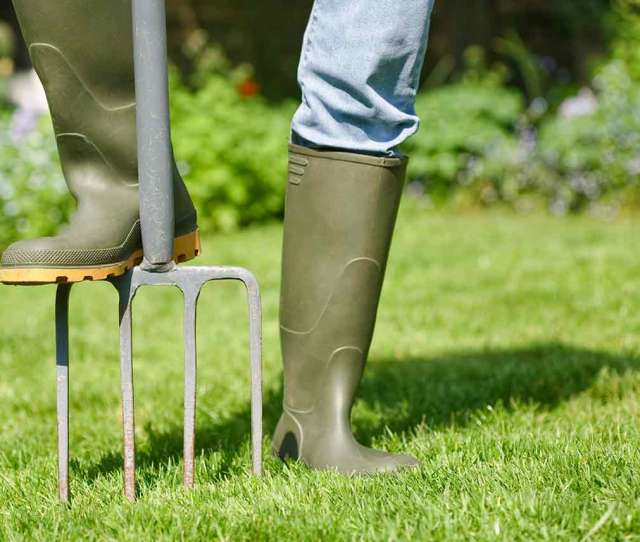 Lawn Care Lessons For Aerating Your Lawn In The Spring