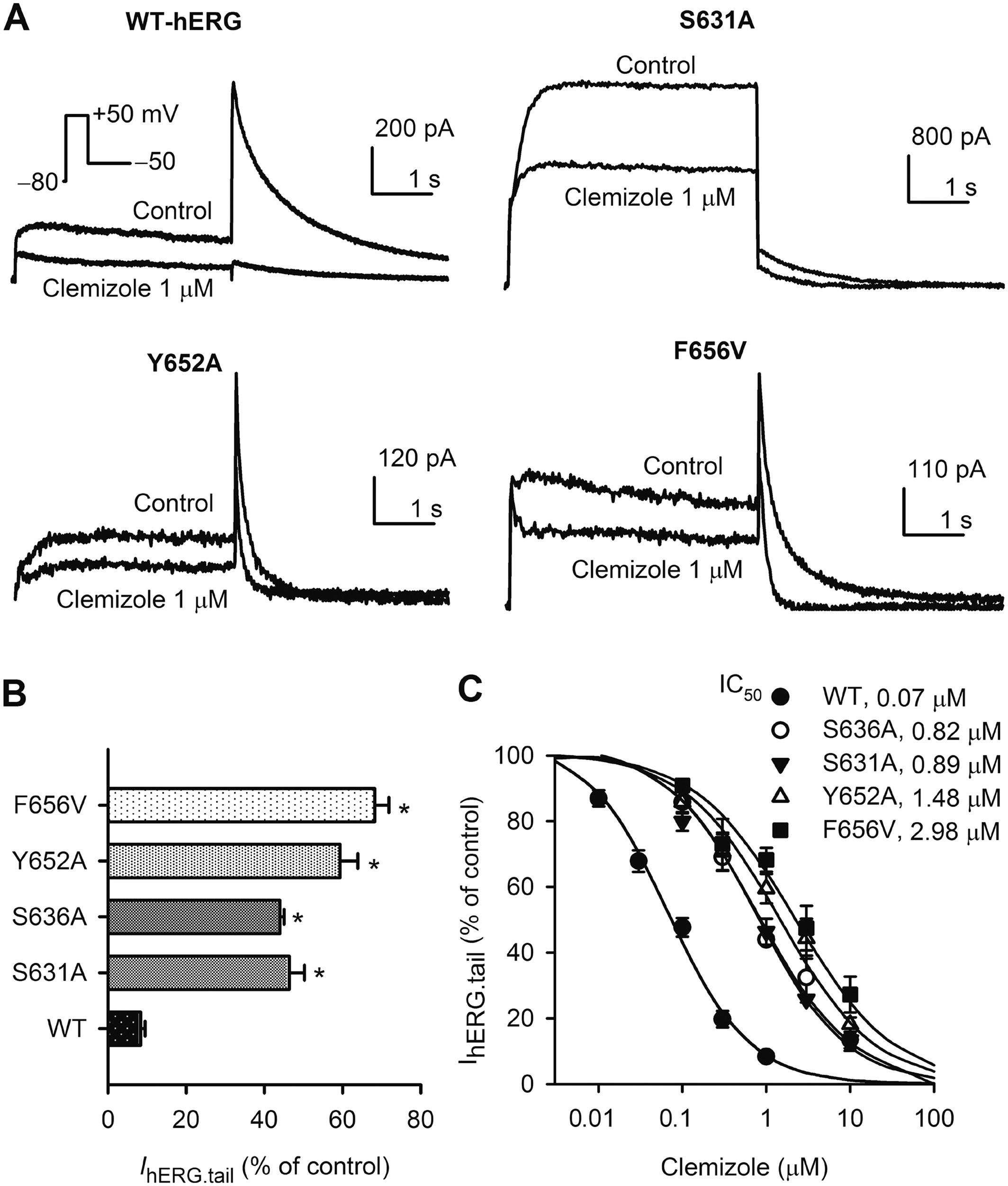 Clemizole hydrochloride blocks cardiac potassium currents