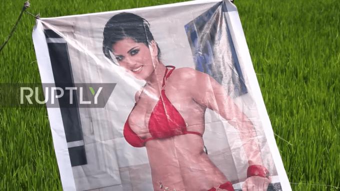 セクシー女優ポスターで畑を守る