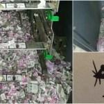 「犯人はATMの中にいる!」インドの紙幣バラバラ事件の真相に迫る