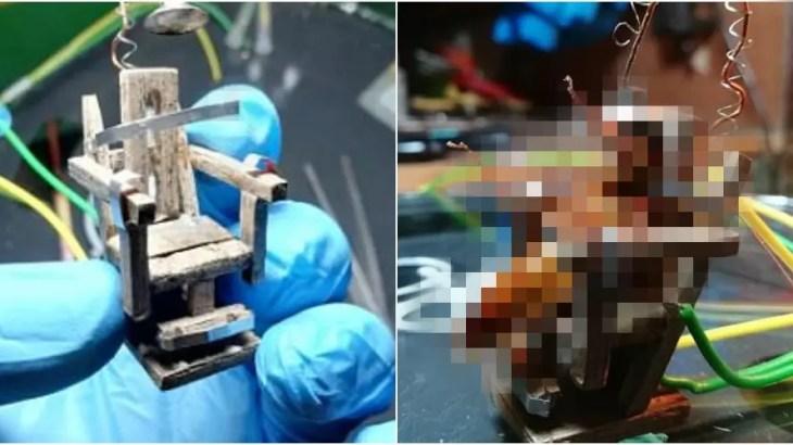 「残酷すぎる!」電気椅子でゴキブリの死刑執行した芸術家に批判殺到で炎上