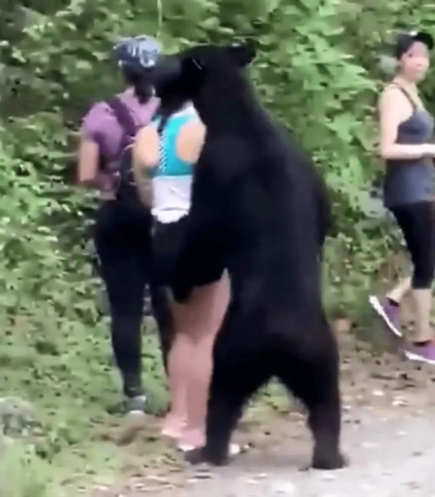 自撮り中に熊と出会った時の対処法