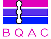Bisexual Queer Alliance Chicago