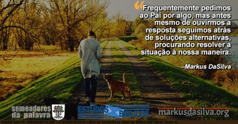 Rapaz passeando com seu cachorro numa estrada cheia de arvores o com Estudo Bíblico - A Onibenevolência (Série Os Atributos De Deus) ou Orando Com Poder (Parte 2) - Por Markus DaSilva