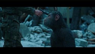 Resultado de imagem para guerra pelo planeta dos macacos