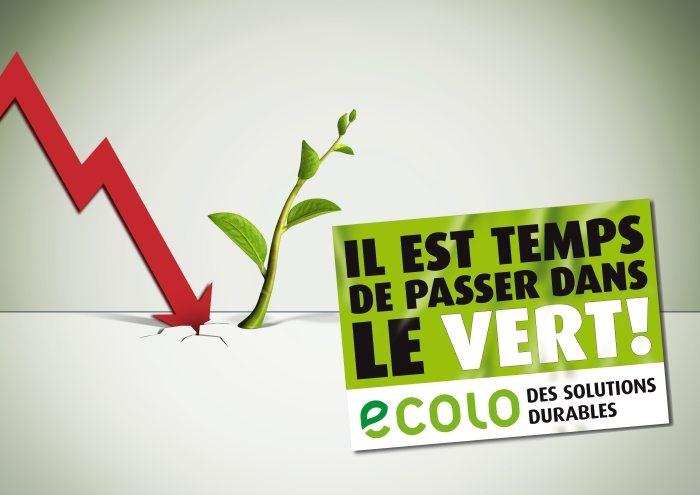 Fiches récapitulatives du programme d'Ecolo pour les élections 2009 : Il est temps de passer dans le Vert !
