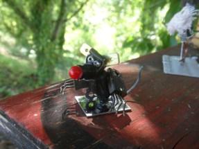 Fabrizio Bellini - Agosto 2015 - rattobot - realizzato al Festival dell'Immaginazione