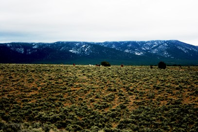 Wild Horses, West side of AR, EF 2