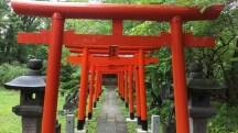 2017 Japan Sightseeing