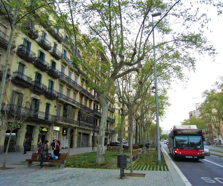 Pocket parks and green spaces – such as this one in Barcelona – could be introduced to areas such as Market Street, Little Germany or the Top of Town.