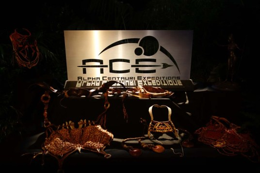 ace logo & artifacts