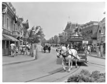 disneyland horse car