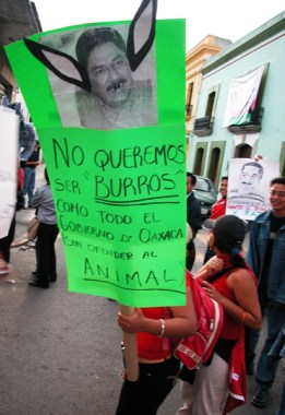 burros_8-19-05
