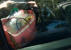 backseat_1-12-08