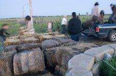 barricade_3-30-08