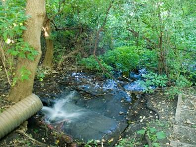 creek_9-3-08