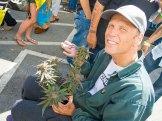 Ken Estes, Grand Daddy Purple