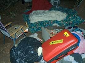 cart-camp_2_8-7-10
