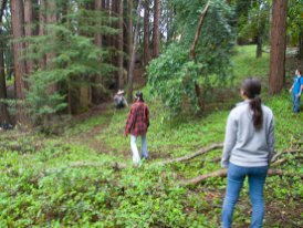 forest-frisbee_4-20-11