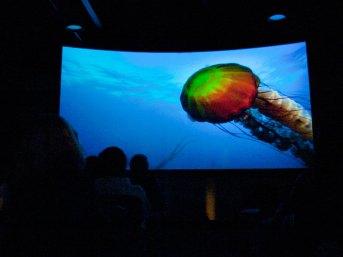 Jellyfish Theater