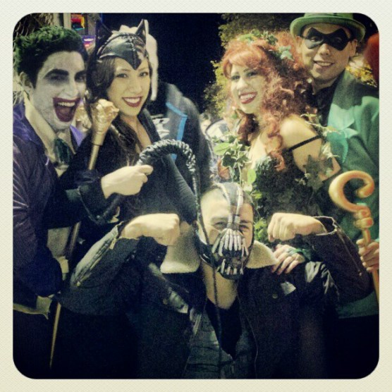 Batman Characters: Joker, Catwoman, PoisonIvy, Riddler, and Bane