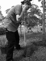 garden5_11-19-03