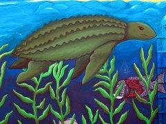 turtle_9-9-04