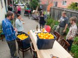 Santa Cruz Fruit Tree Project After the Lemon and Orange Harvest