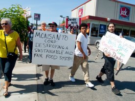 Monsanto Corp: Destroying A Sustainable and Fair Food System