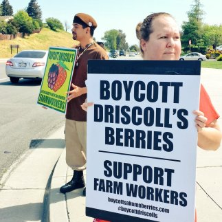 Boycott Driscoll's Berries Support Farmworkers