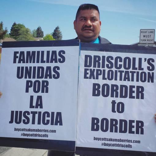 Lázaro Matamoros Displays a Sign: Driscoll's Exploitation Border to Border