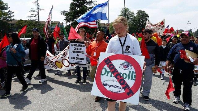 Familias Unidas por la Justicia boycott coordinator Andrew Eckels holds a Boycott Driscoll's sign in the annual Cesar Chavez March in Salinas, California. April 3, 2016. Photo by Michal Garcia.