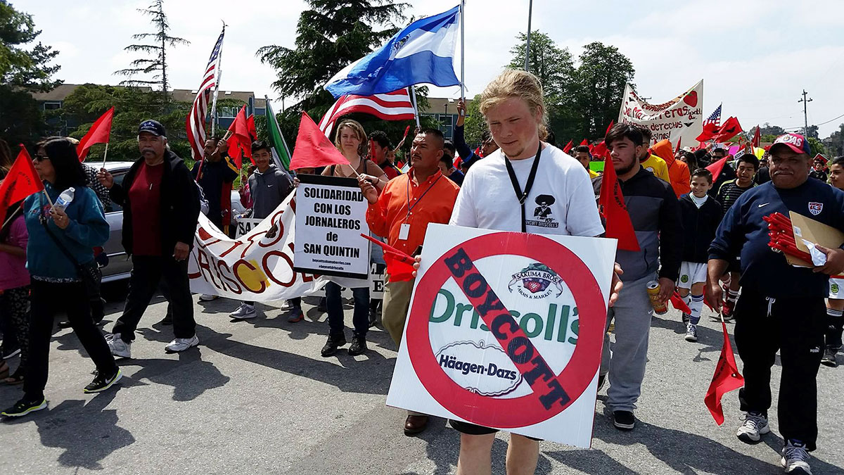 Familias Unidas por la Justicia boycott coordinator Andrew Eckels holds a Boycott Driscoll's sign in the annual Cesar Chavez March in Salinas, California. April 3, 2016. Photo by Michal Garcia.