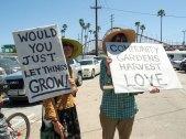 Beach Boardwalk: Just Let Things Grow!