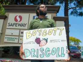 Boycott Driscoll's. Washington State. San Quintín, Baja California