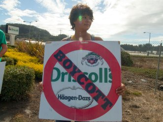 Boycott Driscoll's and Sakuma for Good Measure