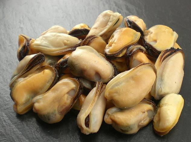 Small Mussels