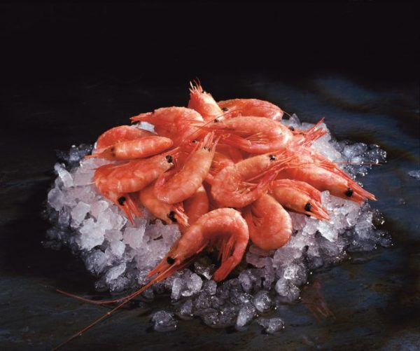 Shell on Prawns 5kg