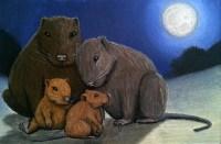 hutia-family