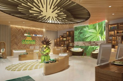Canadian Cannabis Regulations Won't Allow Most Canadians to enjoy an experience like this Pineapple Express Store