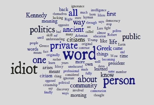 idiot word cloud