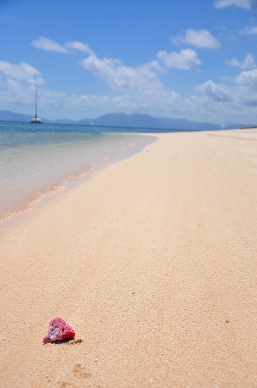 Pink sand. Blue waters. What more can you ask for