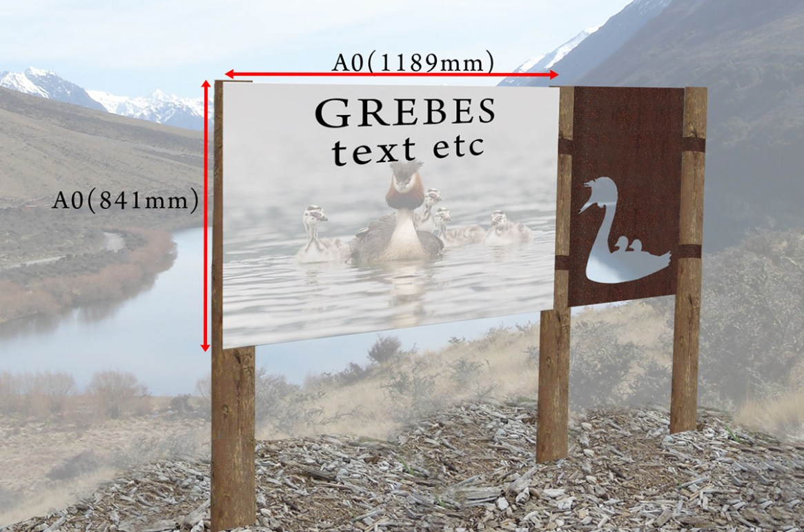 Lake Selfe Grebes concept design at location
