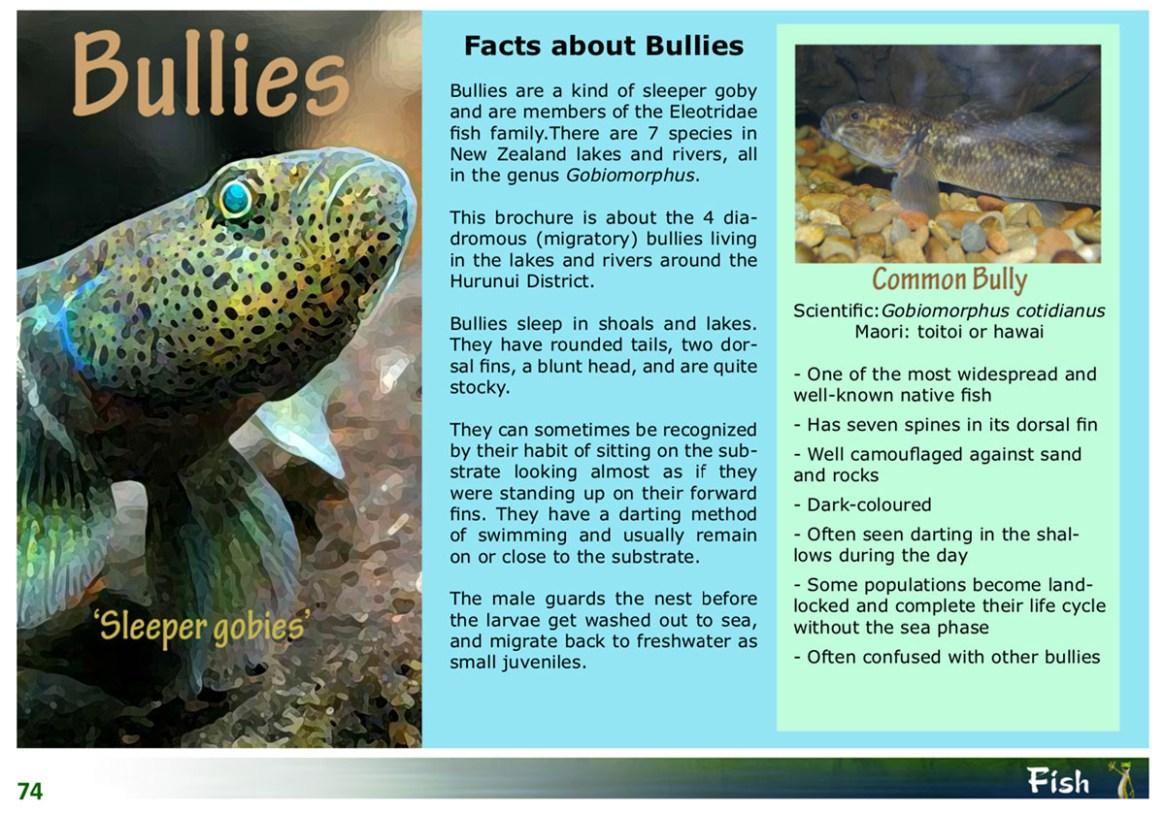 kids_bullies