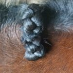 Just snug braid down to neck for flatter bumps