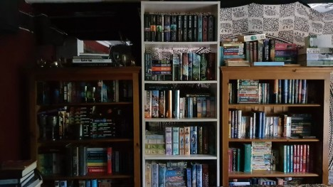 The Snug - luckily the book cases protected most of the books.
