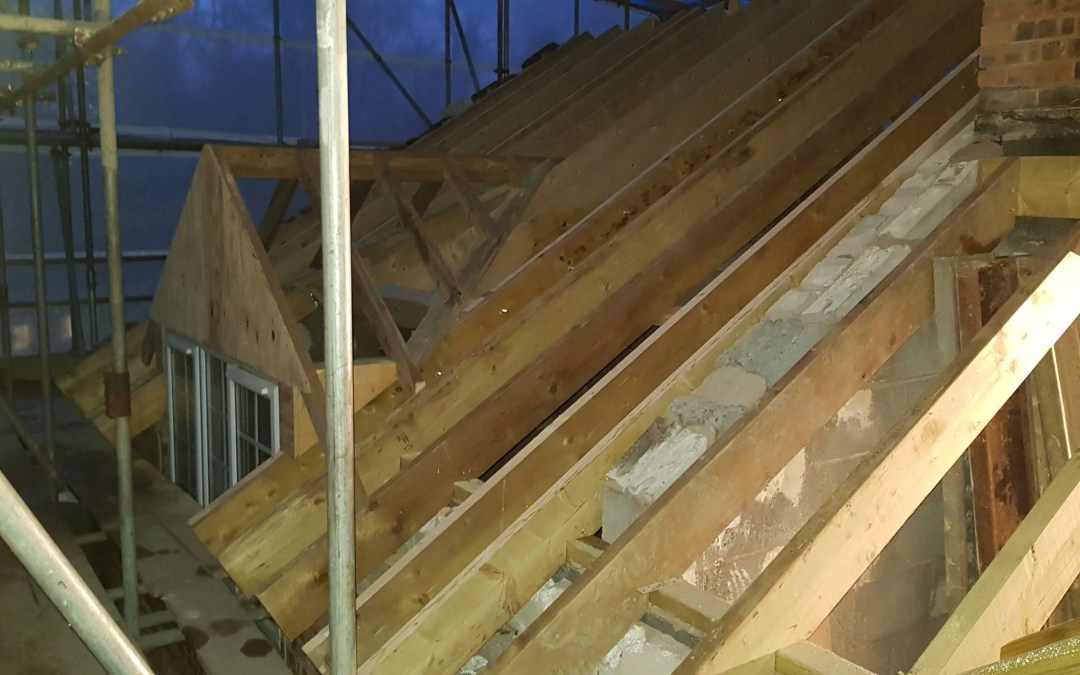 Roof Structure coming along nicely