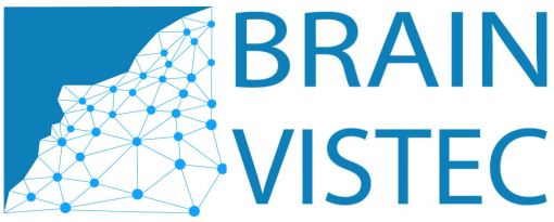 BRAIN VISTEC