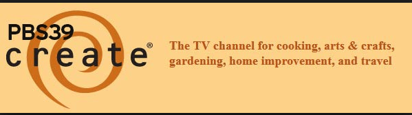 pbs create channel 39 potassium k-channel
